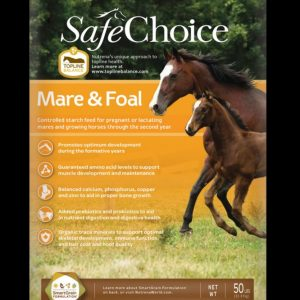 Safe Choice Mare and Foal
