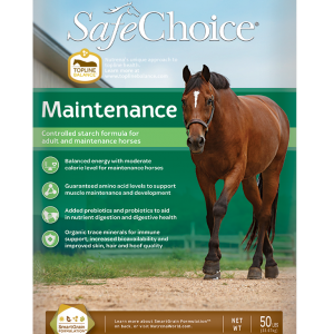 Safe Choice Maintenance