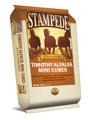 Timothy Alfalfa Mini Cubes