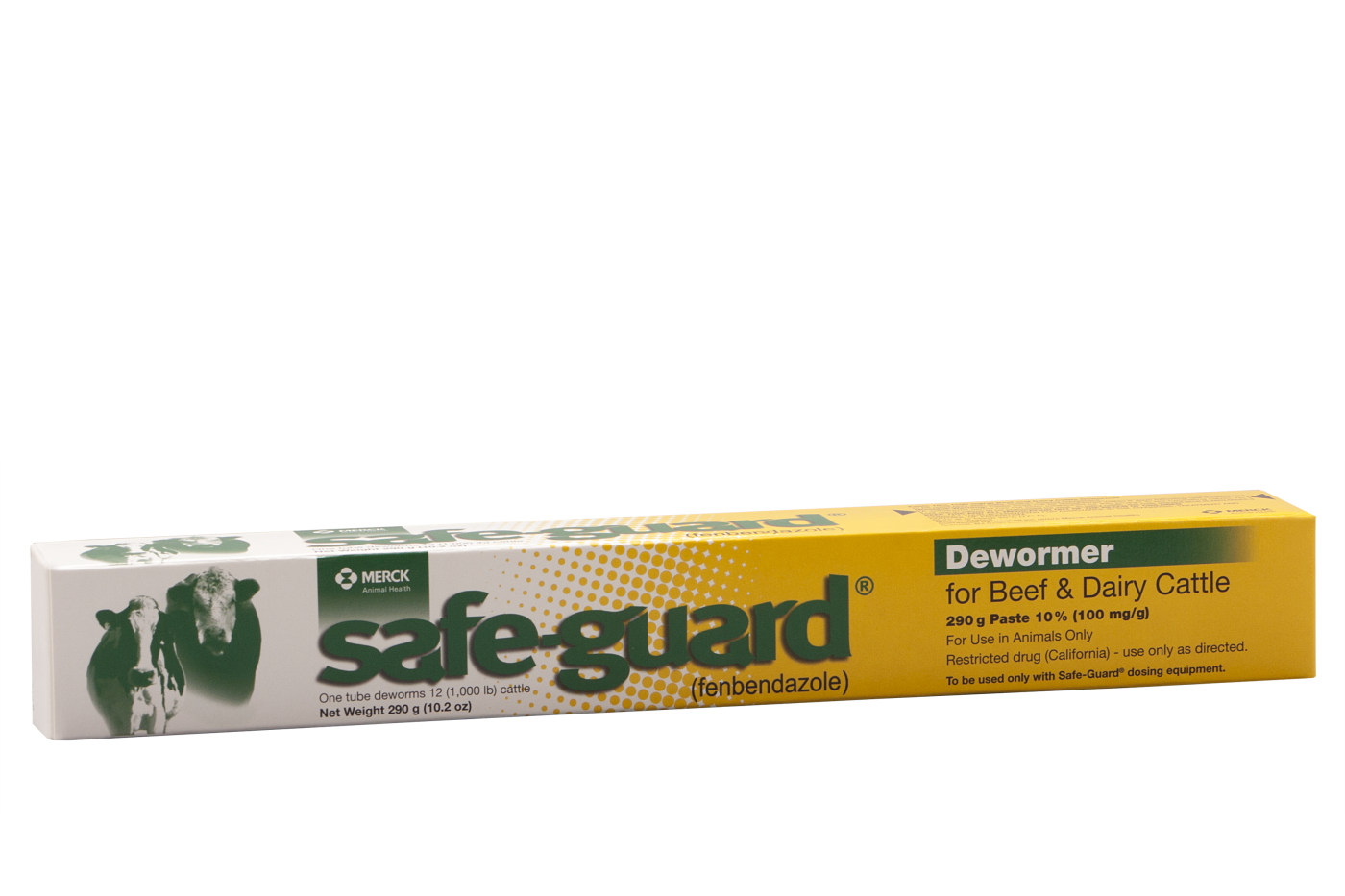 safe guard Paste 290gm