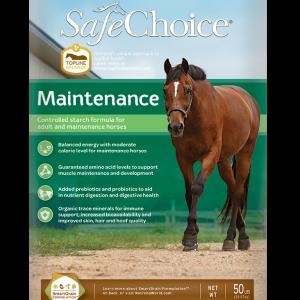 Safe Choice Maintenance