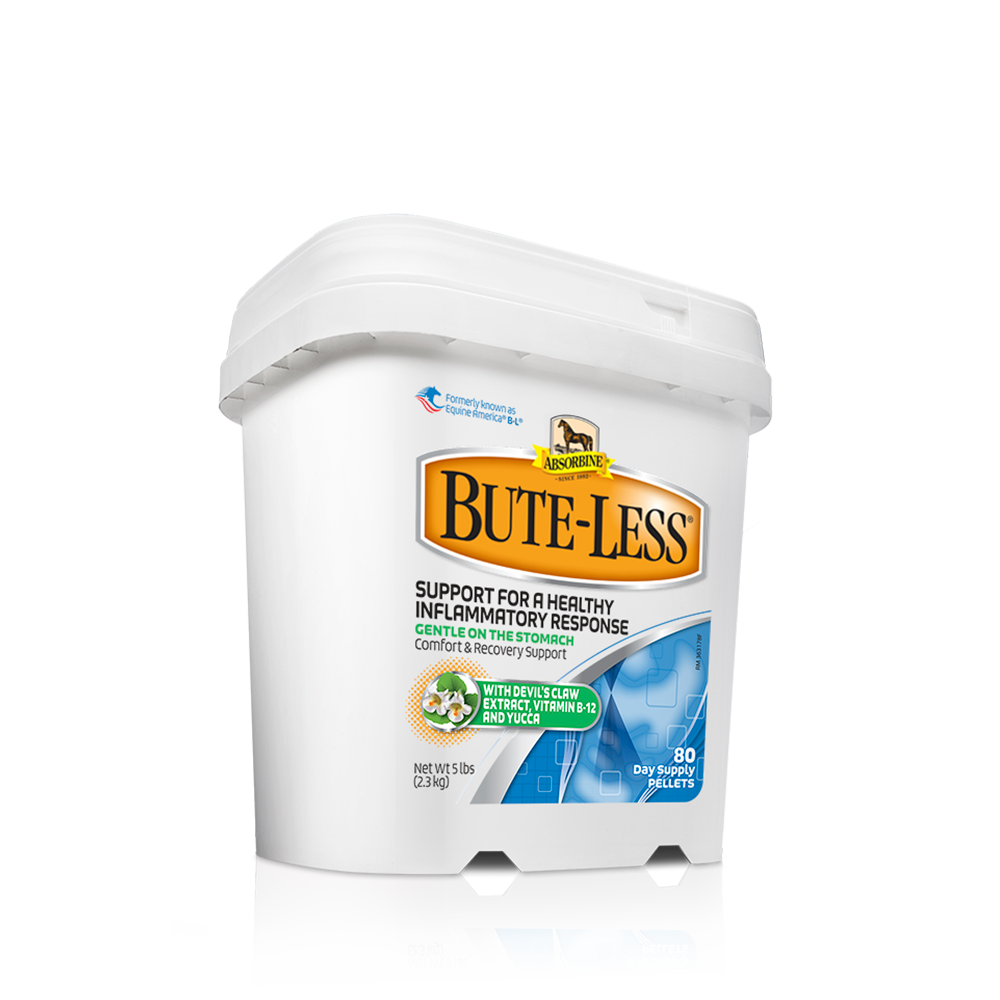 Bute-Less® Comfort & Recovery Support Supplement - G5 Feed & Outdoor