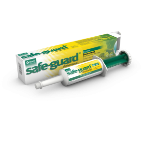 Safeguard paste 92g