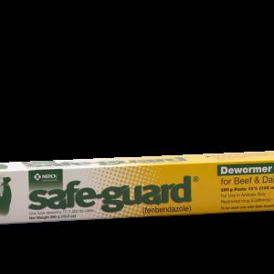 safe guard Paste 290gm